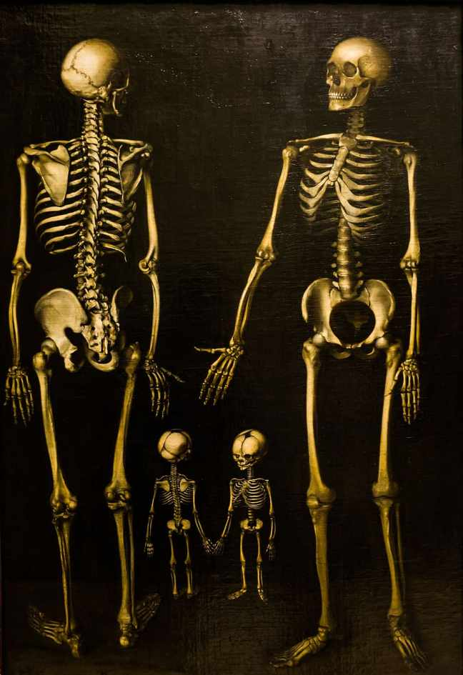 skeletons-family-box-painting